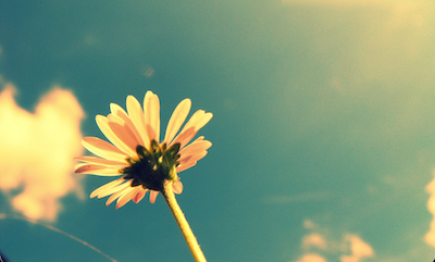 summer-017  ΕΥΧΑΡΙΣΤΟ ΚΑΛΟΚΑΙΡΙ ΧΩΡΙΣ ΑΙΜΟΡΡΟΙΔΕΣ summer 017